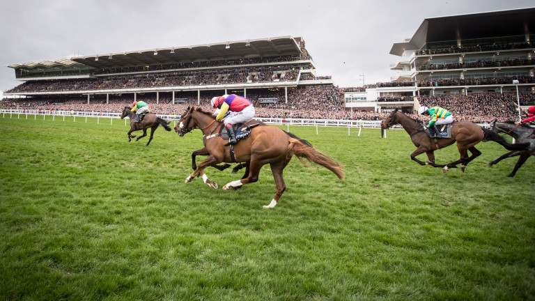 Cheltenham: host the first of their three-day meeting on Friday