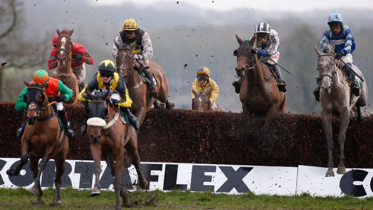 TOWCESTER, ENGLAND - FEBRUARY 15: Liam Treadwell riding Snowball (R) on their way to winning The haygain Hay Steamers Clean Healthy Forage Handicap Steeple Chase at Towcester racecourse on February 15, 2017 in Towcester, England. (Photo by Alan Crowhurst/