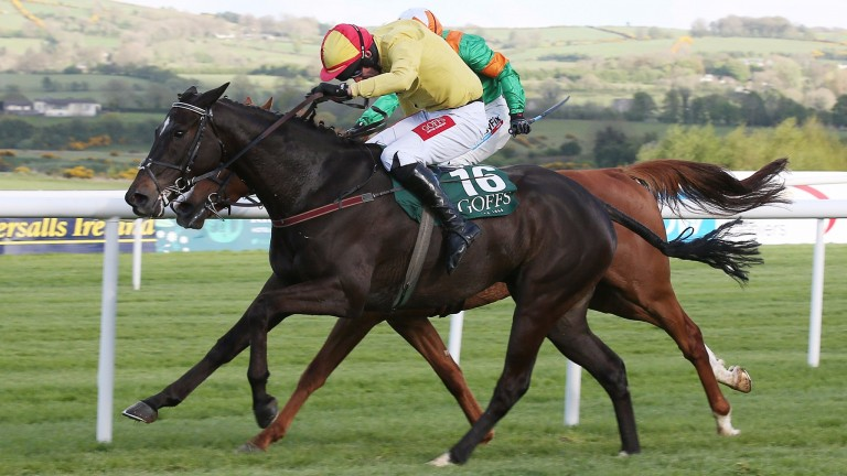 Vision Des Flos (near), now with Colin Tizzard, lands a bumper at last year's meeting for Robert Tyner
