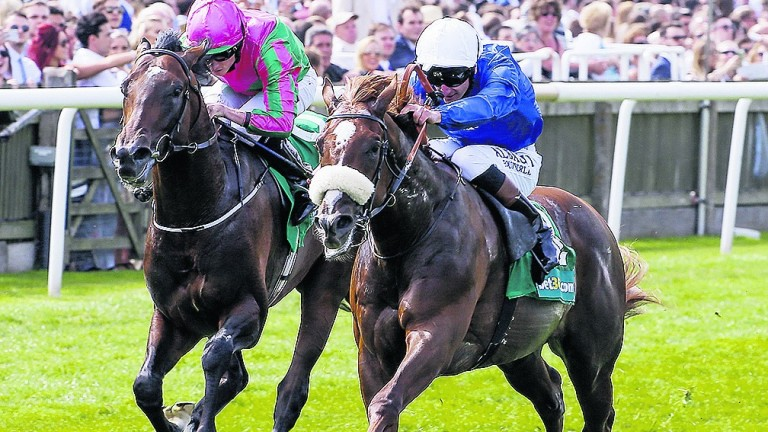 Boynton- favourite for Listed Betway Churchill Stakes