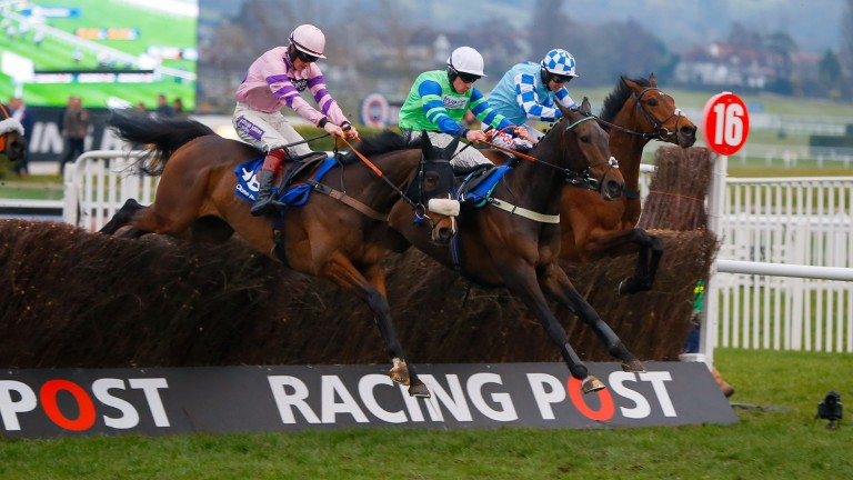 Ballyalton (centre) leads over the final fence before winning the Close Brothers Novices' Handicap Chase at the 2016 Cheltenham Festival