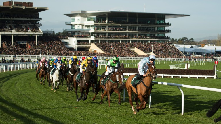 Cheltenham: won the best large racecourse award at the ROA Awards
