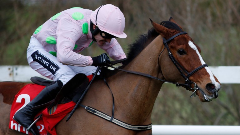 Walsh on Faugheen, who returns to action in the Morgiana Hurdle at Punchestown