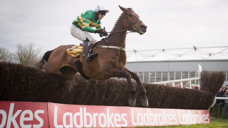 Great Field jumps the last on the way to victory in the Ryanair Novice Chase last April