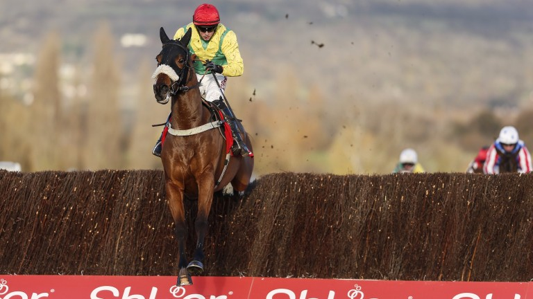 Fox Norton out on his own in the Shloer Chase