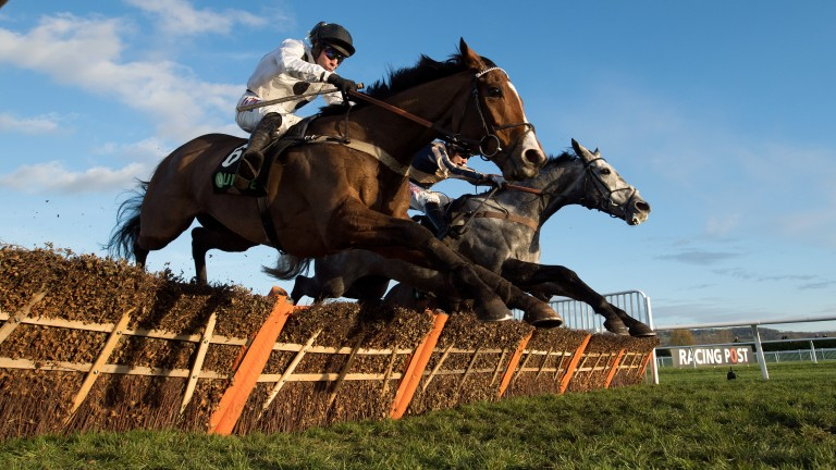 Elgin (left) takes the final flight with Misterton in a thrilling finish to the Greatwood Hurdle