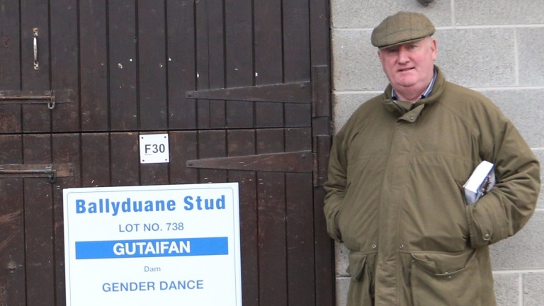 Gerry Mullins of Ballyduane Stud: delighted vendor