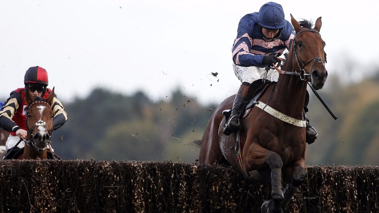 Benatar: a highly promising third in the JLT Novices' Chase