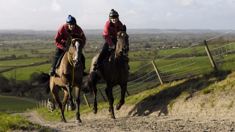 Denman and Jess Allen (right) exercise up the Ditcheat hill in company with Kauto Star and Clifford Baker