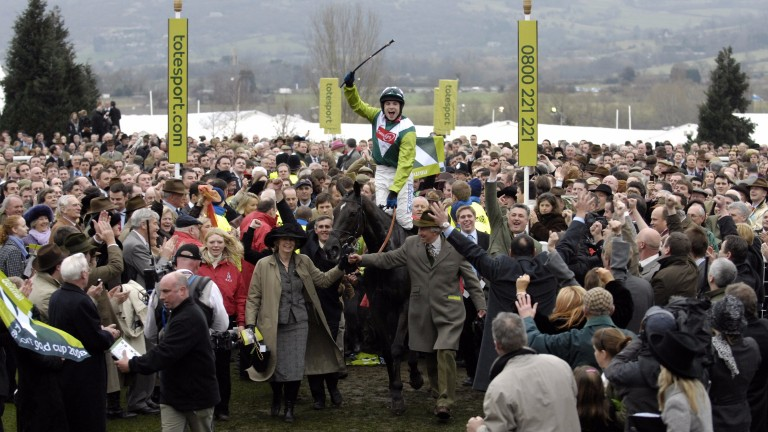 Denman and Sam Thomas are led in to the winners enclosure after The Cheltenham Gold Cup
