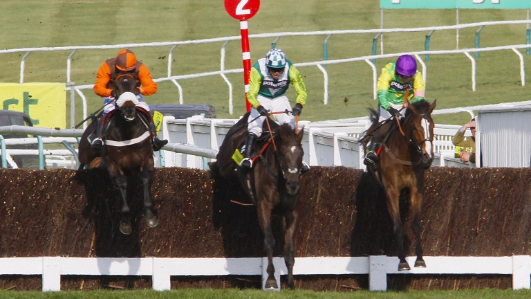 The Gold Cup: a candidate for the complete jumps race