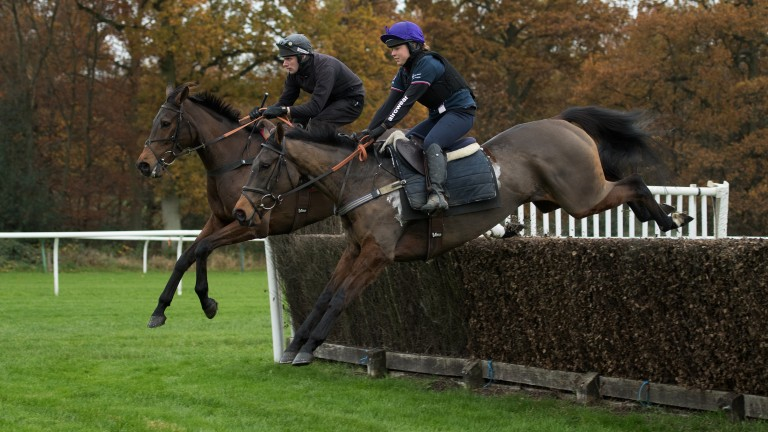 Measured jumps: 2015 Gold Cup winner Coneygree (far), ridden by David Bass, and Flintham, the mount of Lily Bradstock, clear a fence