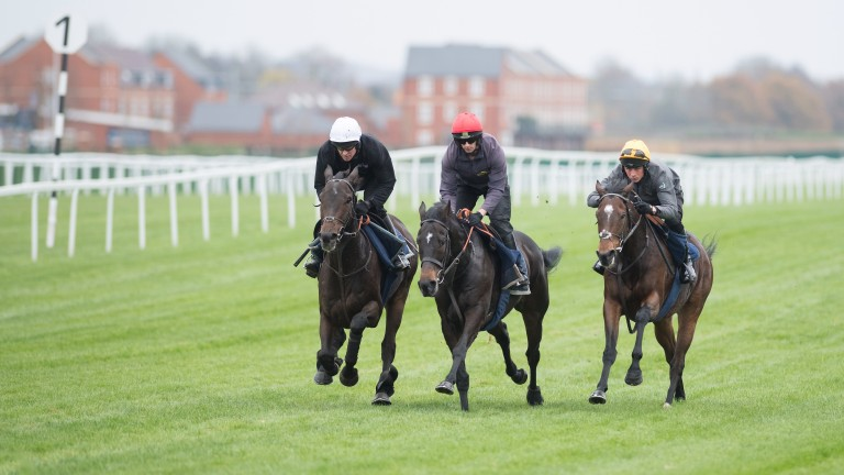 Buveur D'Air (left) with Charli Parcs (red cap) and Divin Bere