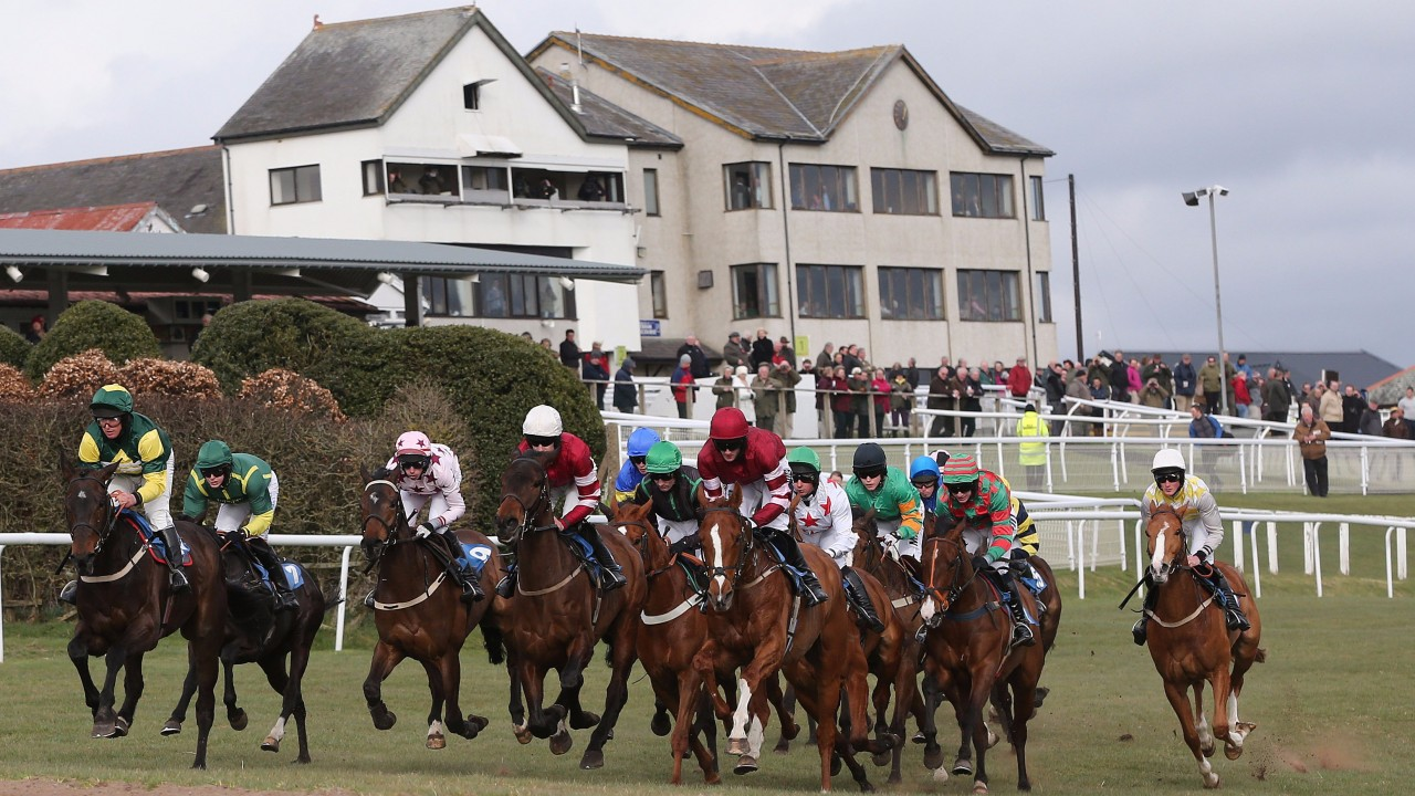 Image result for hexham races