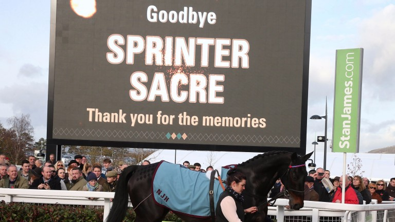 Sprinter Sacre: famous example of horse who benefited from wind surgery