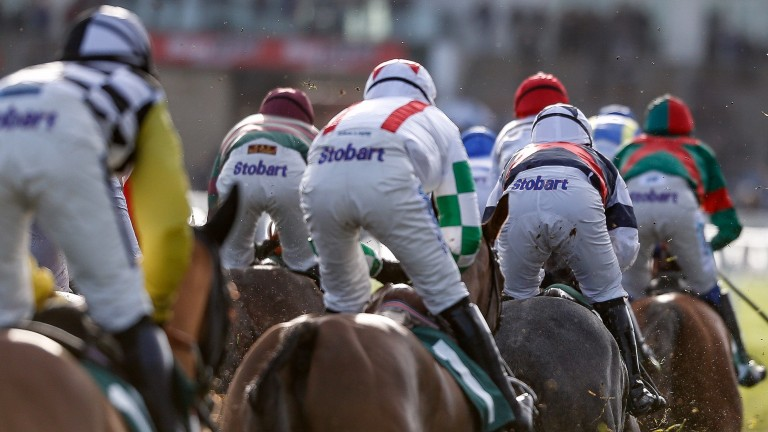 Interviewing the beaten jockeys at Cheltenham was a welcome innovation