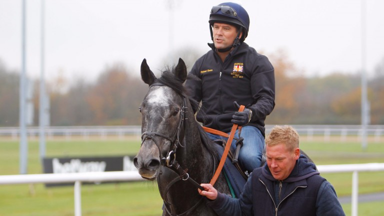 Michael Owen had an away day at Wolverhampton with his charity race ride Calder Prince