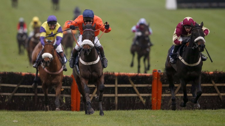 Western Ryder (orange): lines up in Cheltenham's opener on Friday