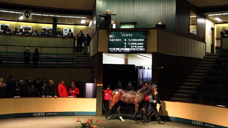 Auctioneer Henry Beeby knocks the Galileo filly out of Inca Princess down to Hugo Lascelles for €1.1 million