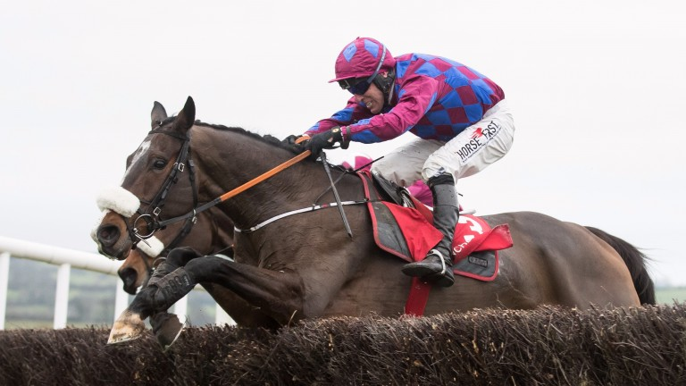 Jury Duty is one of two runners for Gordon Elliott in the American Grand National