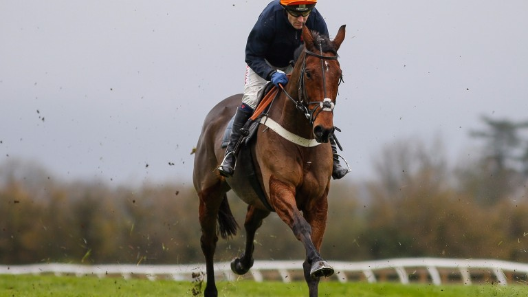 racingpost.com - Bruce Jackson - Thistlecrack fit and raring to go for Newbury hurdles assignment | Horse Racing News