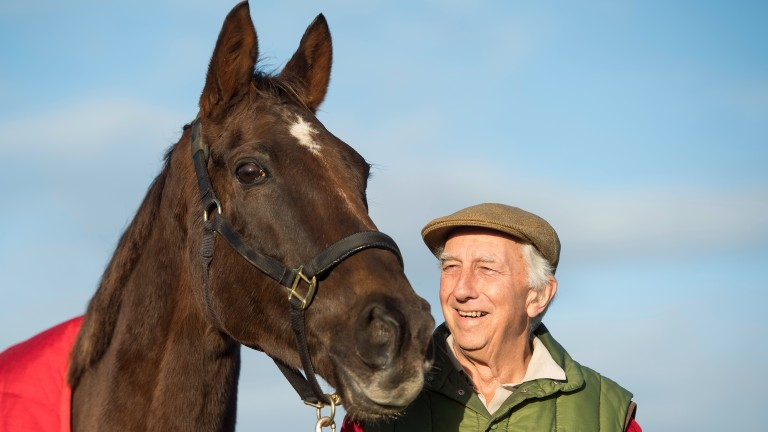 Denman, now 17, at his Ditcheat retirement home with owner Paul Barber