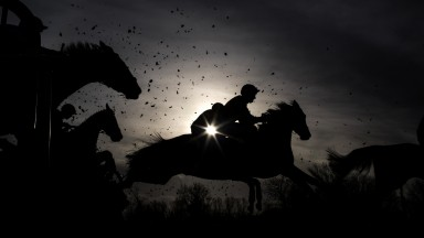 Winter wonders: a gorgeous silhouette of the runners in the 2m7f mares' maiden hurdle