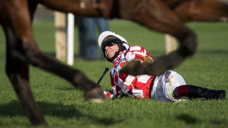 Late drama: champion jockey Richard Johnson, who was later stood down, grimaces in pain after a final-flight fall on Springtown Lake