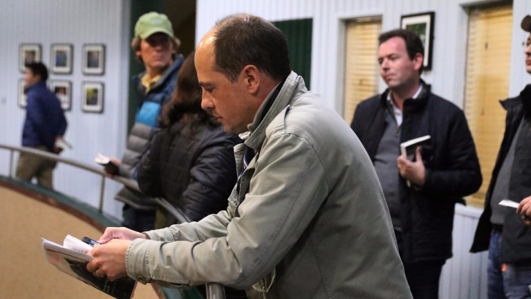 Laurent Benoit: delighted to have bought Inca Princess