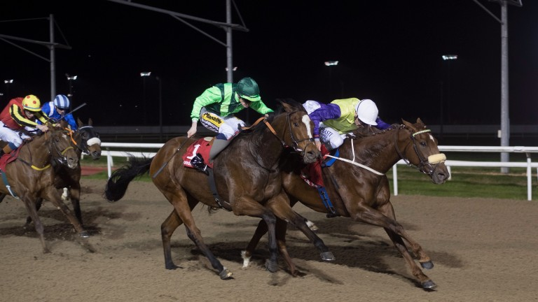 Settle For Bay, seen here winning at Dundalk under Donagh O'Connor earlier in the month, was one of seven winners advised by the Friday Night Lights team last week