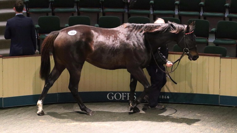 Heartful proved the pick of the Moyglare Stud draft