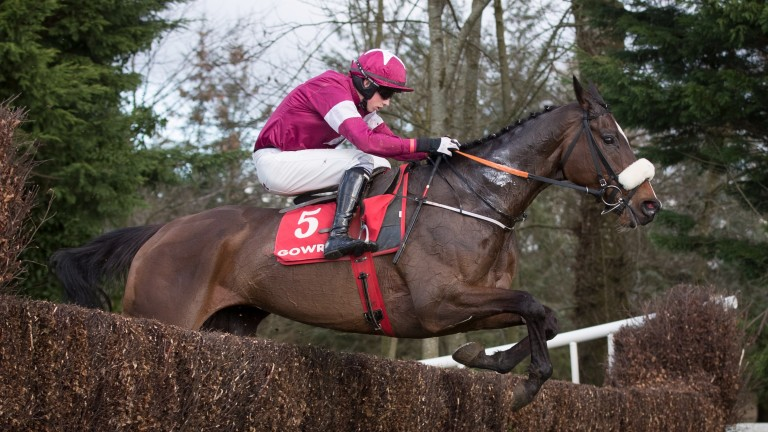 General Principle, one of Gordon Elliott's six-strong team, will be ridden by Jack Kennedy