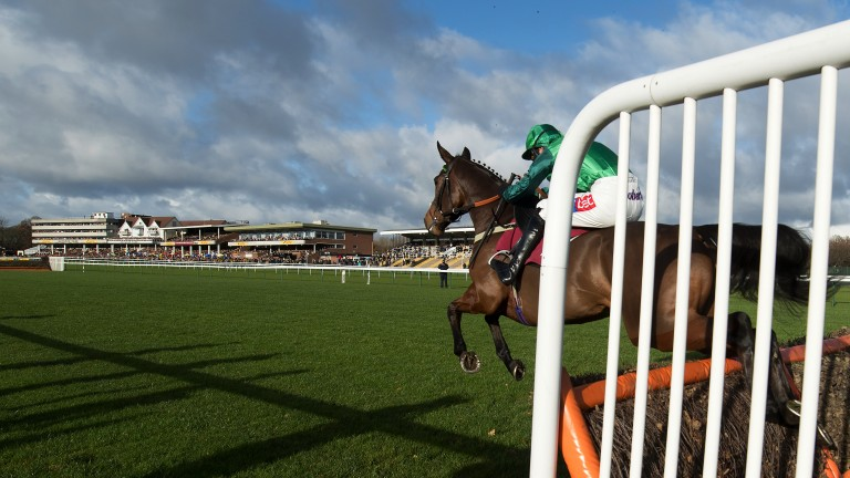 Ears pricked: Delire D'Estruval, eventual winner of the 1m7½f Listed novices' hurdle, jumps a flight under Daryl Jacob