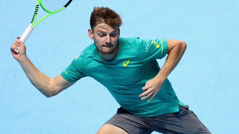David Goffin is having the best season of his career