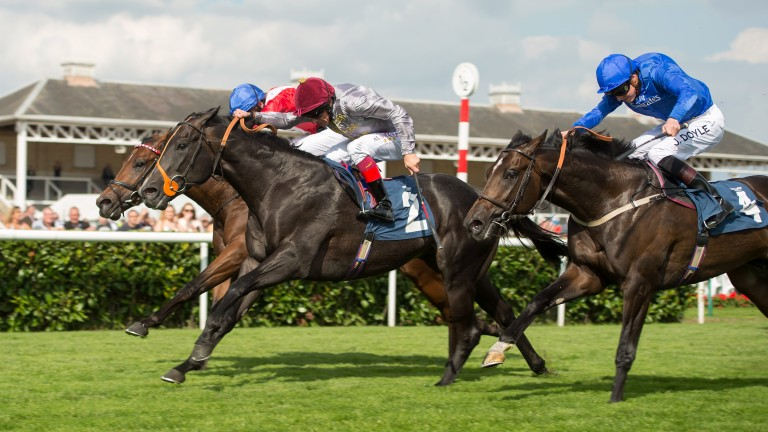 Gutaifan (maroon cap) wins the 2015 Flying Childers Stakes
