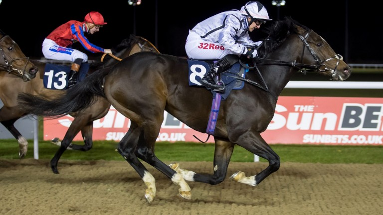 Josephine Gordon rides her 100th winner of the year on Thunderbolt Rocks under the lights at Wolverhampton on Saturday