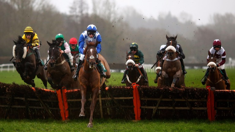 Jumps action at Lingfield on Tuesday