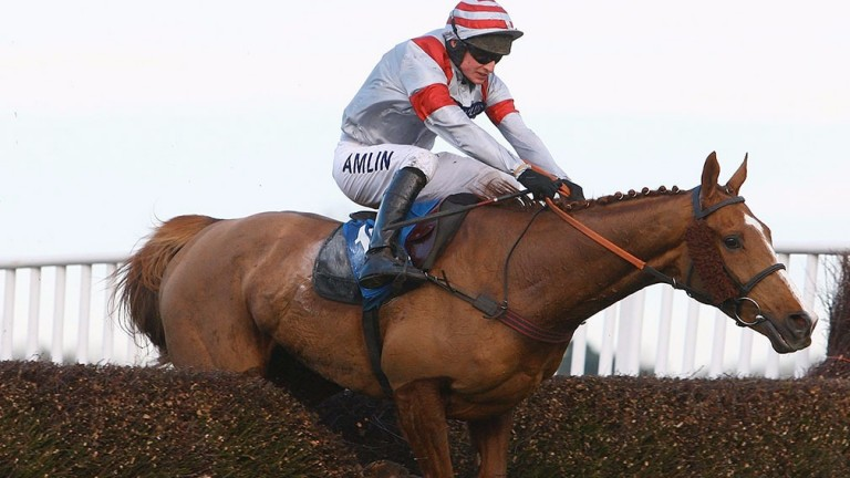 Dream Alliance: won the 2009 Welsh Grand National