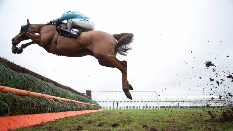 Mad Moose and Sam Twiston-Davies make a flying leap at Cheltenham in January 2013
