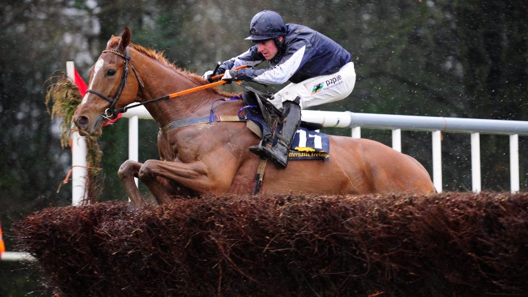 Samcro winning his point-to-point at Monksgrange under Barry O'Neill in April 2016