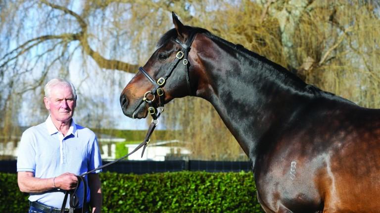 Sir Patrick Hogan with his stallion ace Tavistock