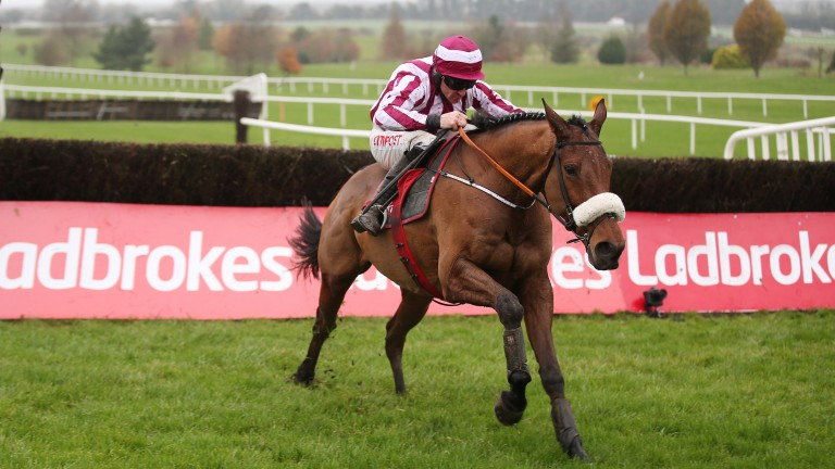 Mala Beach: will take his chance in the Irish Gold Cup at Leopardstown