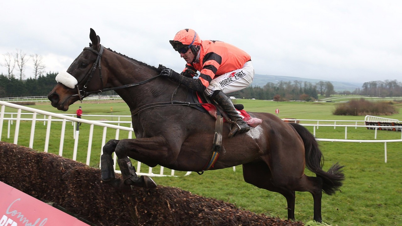 Harrington hoping for lift off with Jett in high-class