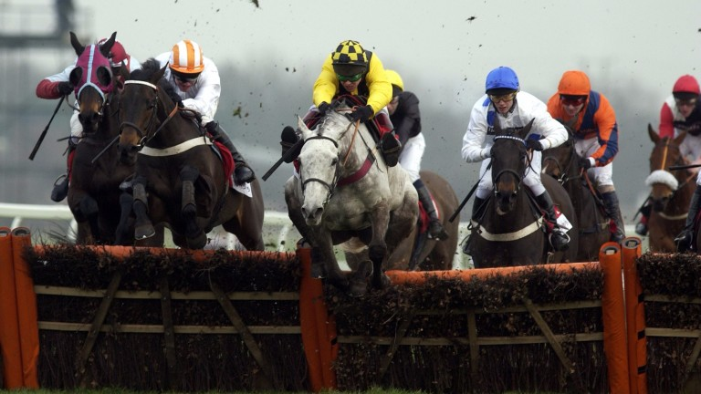 Rooster Booster leads over the last in the 2004 Tote Gold Trophy at Newbury