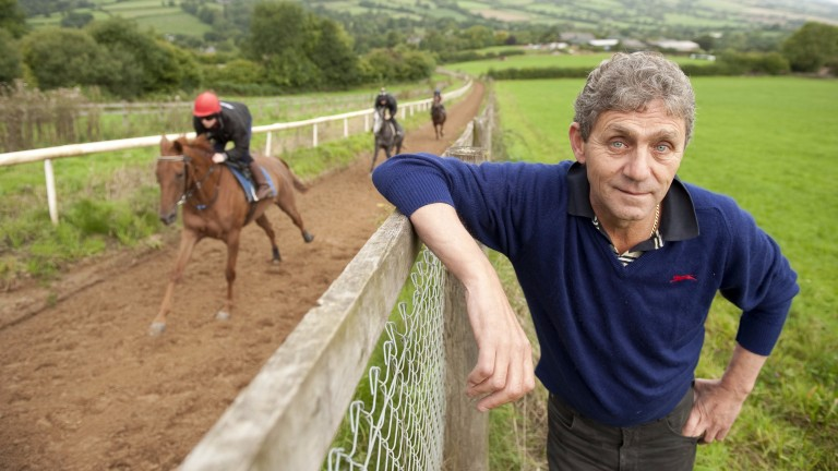 """David Evans: """"You can never guarantee what any horse will do"""""""