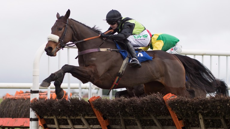 Dawn Shadow in winning action at Thurles last month