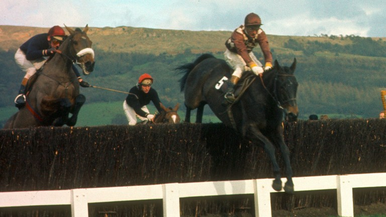 Davy Lad leads Tied Cottage over the last before giving Mick O'Toole his biggest Cheltenham Festival success in the 1977 Gold Cup