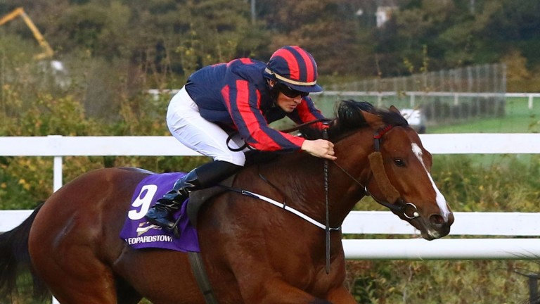 Thomas Sherry: seen in action earlier this season, the 19-year-old rode his first winner last week at Dundalk