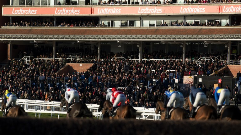 Newbury: chief executive says no current plans to take on Towcester