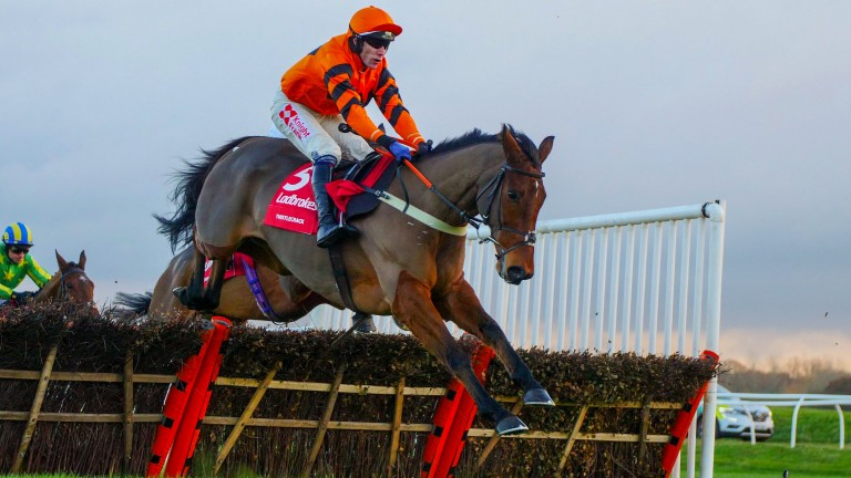 Thistlecrack: not what the doctor ordered